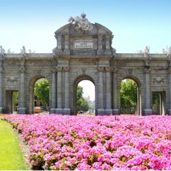 Private Tour by train AVE To Madrid
