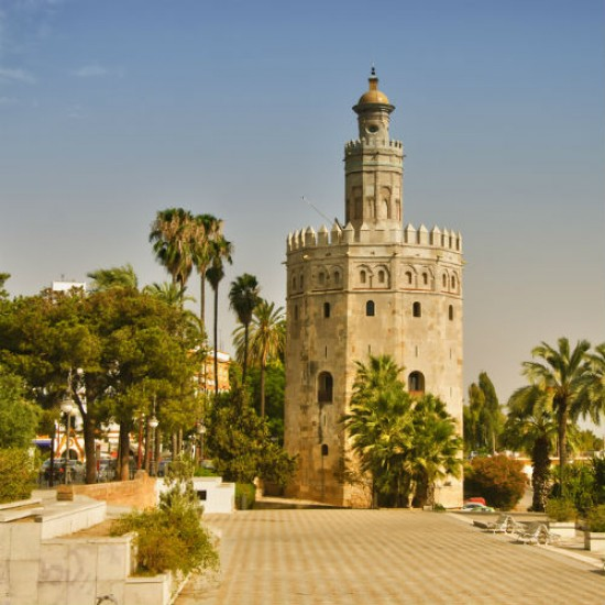 Sevilla tour by train AVE (Full day)