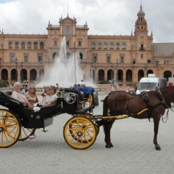 PANORAMIC TOUR BY HORSE-DRAWN CARRIAGE