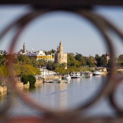 INTRODUCTORY WALKING TOUR: SEVILLE HIGHLIGHTS