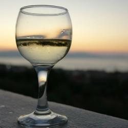 FULL DAY TRIP: WINE AND CAVA