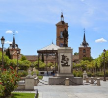 Alcalá De Henares (Full day - 8H)