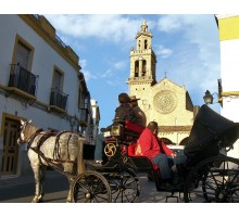 HORSE-DRAWN CARRIAGE RIDE THROUGH CORDOBA