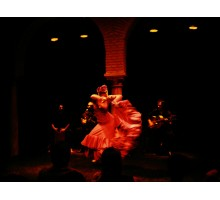 FLAMENCO LESSONS AND SHOW